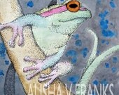 Original Art Print - Curious Frog - ACEO