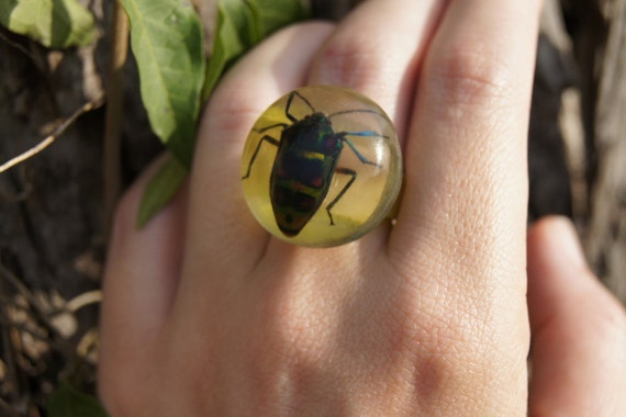 Vintage Ring with REAL Beetle in it - Size 8