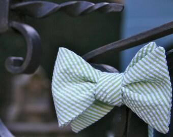 Green Seersucker Bow Tie