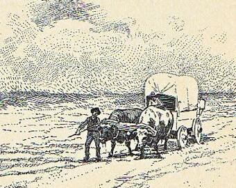 Vintage Americana  The Bull Team Vintage Print 1901