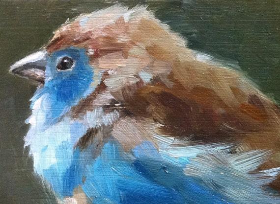 Blue Waxbill - Original oil painting