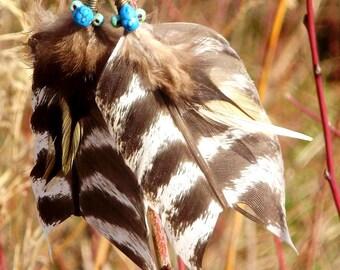 Navajo wild earrings
