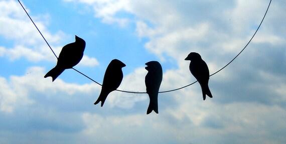 Full sting of birds