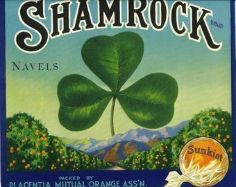 Shamrock Sunkist Navels Vintage Crate Label, 1930's