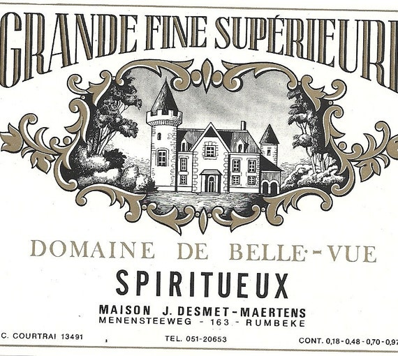 Chateau de Bellevue - Famille Tijou, viticulteur a Rochefort sur Loire