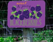 Fresh & Juicy Blackberries Farm Sign 18X12""