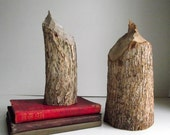 Beaver Stump Bookends Natural Wood Rustic Cabin Woodland Décor Natural Science Decor Eco Friendly