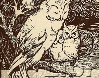By Evening Light - The Owls And The Wisp -  - Vintage Bookplate - Personalized Bookplate