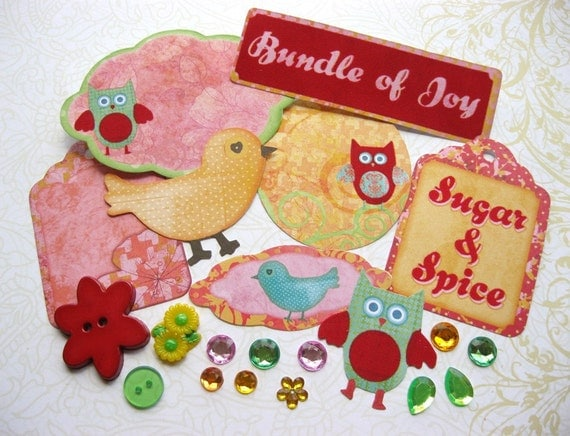 Scrapbooking Kit Baby Girl Animal Embellishment Kit for Scrapbooking Cards Mini Albums and Papercrafts