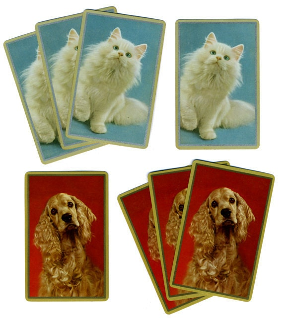 White CAT & COCKER SPANIEL (8) Vintage Single Swap Playing Cards