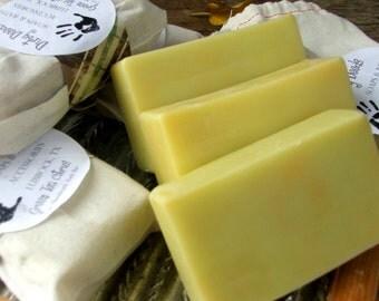 Green Tea Citrus- Handmade Soap