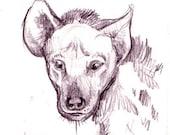 Hyena Original ACEO 2 1/2 x 3 1/2