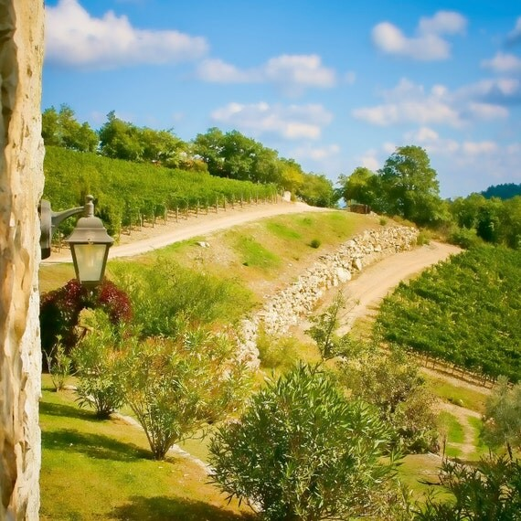 Room with a View - Italy photography - Tuscany vineyard - Fine art travel photography - green, gold, blue