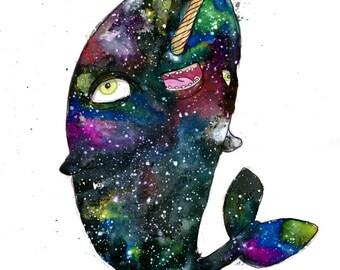 Nebula Narwhal
