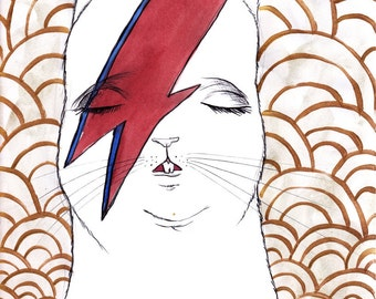 Bowie Bunny