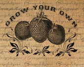 Digital Collage Sheet Fabric Transfer Burlap Digital Download Garden Grow Your Own TEXT Strawberries Iron On Pillow Tote Tea Towels No. 2096