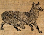ANIMALS Digital Collage Sheet Download Burlap Fabric Transfer Fox Drawing Sketch Iron On Pillows Totes Tea Towels No. 3080