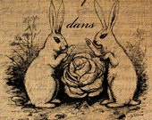FRENCH Text RABBITS in the CABBAGE Bunny Digital Collage Sheet Download Burlap Fabric Transfer Iron On Pillows Totes Tea Towels No. 4026