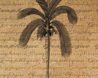 Botanical Palm Tree Digital Image Download Sheet Transfer To Pillows Totes Tea Towels Burlap No. 1858