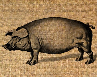 Happy Pig Farm Animal Series Digital Image Download Transfer For Pillows Totes Tea Towels Burlap No. 2473