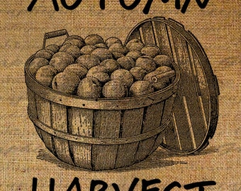 Autumn Word Harvest Thanksgiving Fall Country Farm Fruit Barrel Digital Image Download Transfers To Pillows Totes Tea Towels Burlap No.2910
