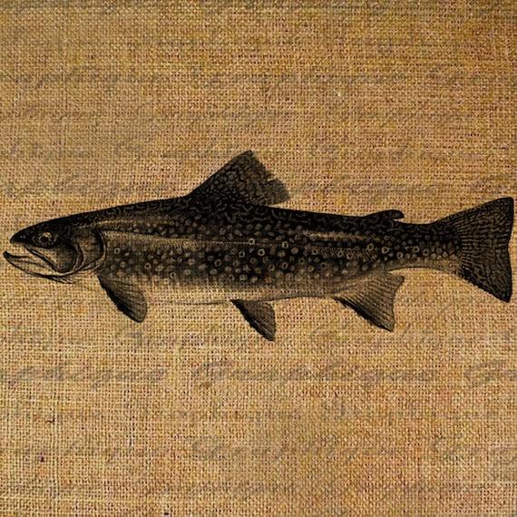 Trout Fish Fishing Lake Angler Digital Image Download Transfer To Pillows Totes Tea Towels BurlapNo. 2311