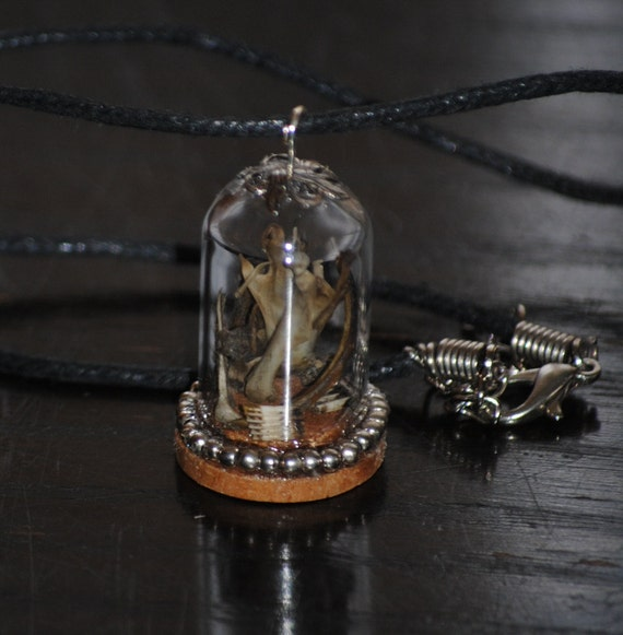 OOAK Tiny Found Ossuary necklace rodent bones in mini glass dome cloche