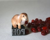 Vintage Letterpress Type with Hare