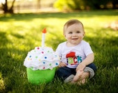 Photo Prop Birthday Cupcake, Children's Photography, Made to order, first birthday party photos, removable candle
