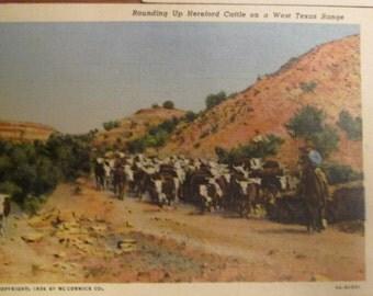 Three Southwestern Souvenir Postcards - Pueblo Pottery Dells and Texas Roundup - C T Colortone Art Linen - Bennett Studio Photo Card