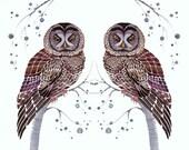 Owls, Lacy Owl Twins, birds art print by OlaLiola, size 10x8 (No. 31)