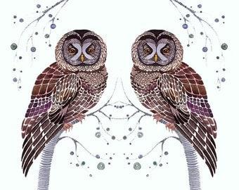 "Owls lacy birds // SALE 1+1 // Buy one get one FREE, art print ""Lacy Owl Twins"" by OlaLiola, size 7x5 (No. 31s)"