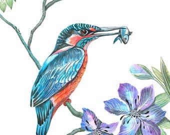 Kingfisher bird, wild life watercolor art print, size 8x10. (No. 9)