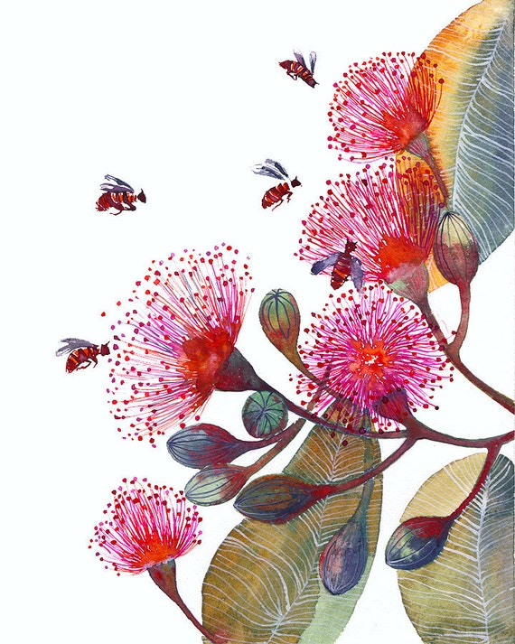 Pink Flowering Gum, flowers and bees, popular nature art print, size 8x10 (No. 24)