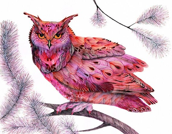 Cranberry Owl bird, print, wildlife watercolor painting print, size 10x8, limited edition 23/100 (No. 50)