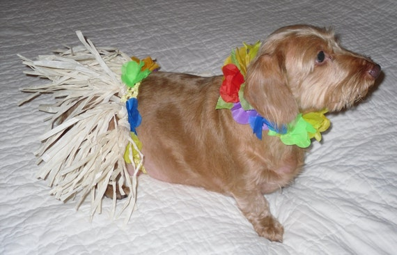 Dog Hawaiian Hula Skirt with Matching Lei.  Comes in Toy, Small, Medium and Large sizes FREE SHIPPING