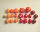 Art For Kitchen:Market Tomatoes Fine Art Food Photography foodie heirloom tomato rainbow red yellow orange Kitchen Art fruit wall decor