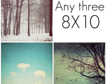 SAVE 20% off set of any three 8x10 fine art prints - YOU pick Print set, Art collection