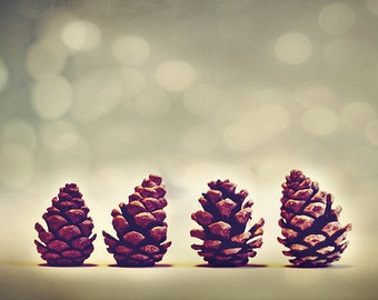 Winter Art Prints: Pine Cones Fine Art Nature Photography Still Life Photography Christmas pine cone nature photos botanical art prints