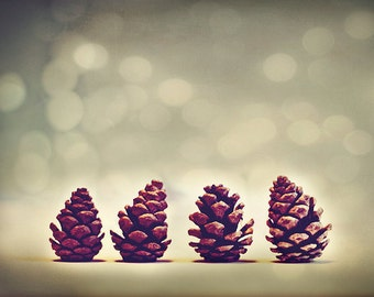 Nature Photography: Pine Cones Fine Art Winter Nature Photography nature photos botanical art prints Still life Photography Bokeh Blue