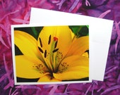 Bright Yellow Lily - Flower Card - Blank Inside