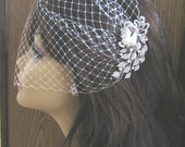 Birdcage Veil and a Bridal Hair Comb (2 Items) Rhinestone Bridal Hair Comb Bridal Headpiece Weddings Blusher Bird Cage Veil  Bridal Jewelry