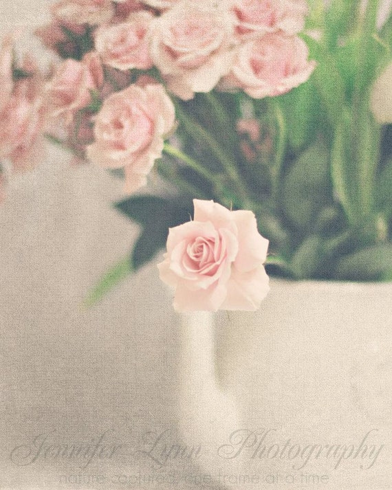 flower photography blush pink cream ivory green white rose roses  / 8x10 Fine Art Photograph / Petite Rose n.3