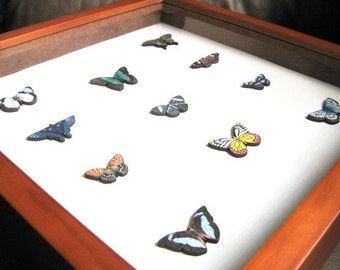 Happy Butterfly Shadow Box Display