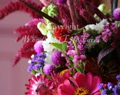SALE (50% off) - Flowers Set I - Photo Note Cards - Set of 4 different images