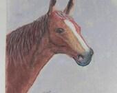 SALE HORSE Painting Signed Original Pastel Pencil picture Vintage  H Matthews