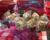 Multi Colored Marshmallow and Chocolate Sprinkle Pops