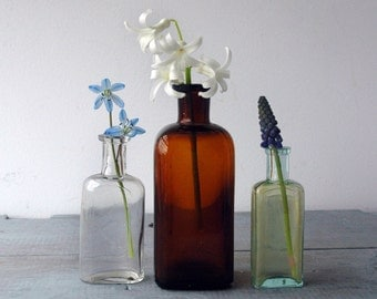 Antique Apothecary Bottles, Set B