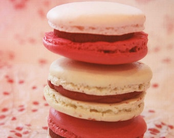 macaron, pink, paris, macaroon, french cookie, cherry blossom, 8x10 fine art photo, white, food photography, whimsy, shabby chid
