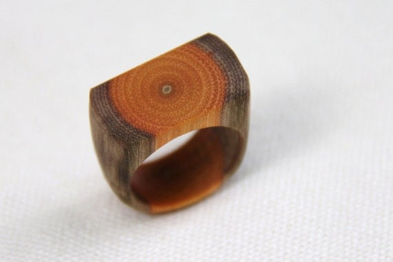 tree branch ring - black birch - size 7-1/4